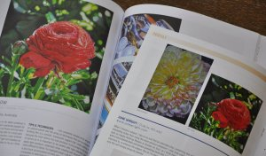 CP Treasures Vol II book (left) CP Magazine article (right)